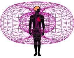 Campi elettromagnetici schema decreto legislativo