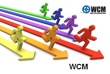 una metodologia per la gestione di uno stabilimento produttivo che integra la Lean manufacturing e la Qualità Totale